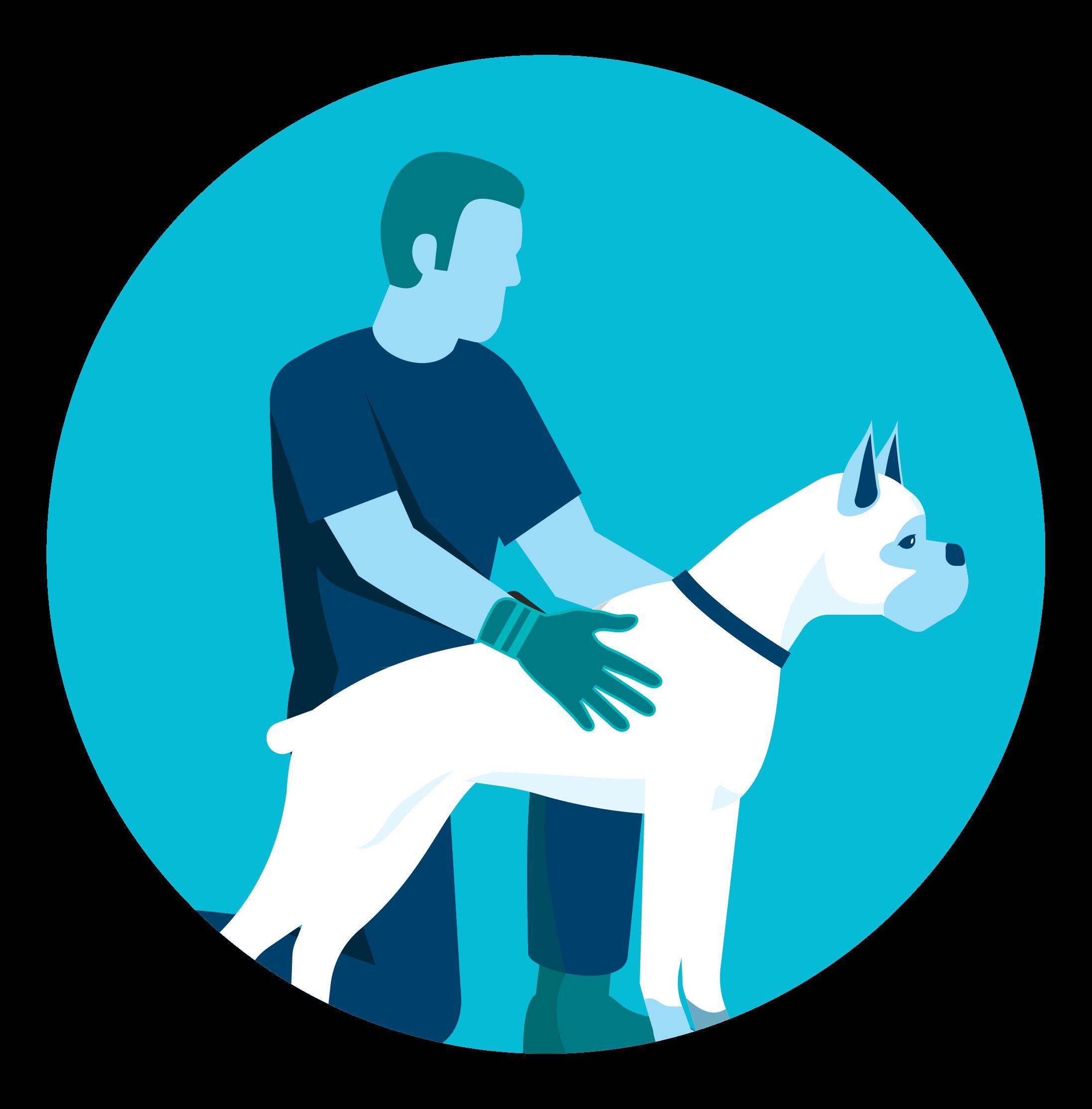 pet wash icon